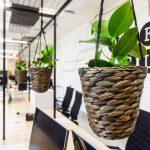 Office Club flexible workspace